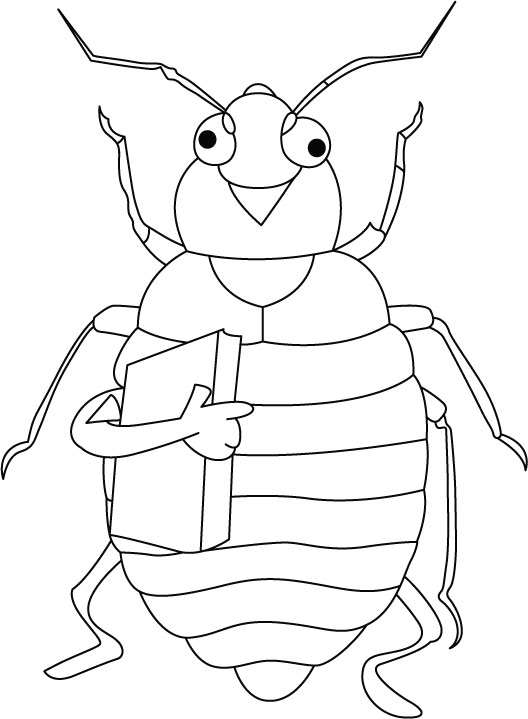 cicadas cicada coloring page coloring pages cicada sits on tree