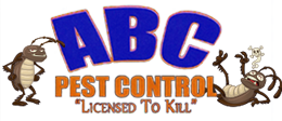 Ez As ABC Pest